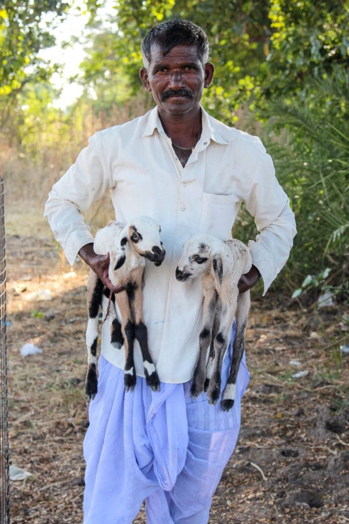 guy holding goat