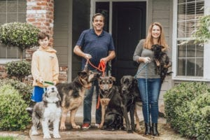 family with 5 dogs