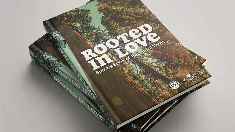 stack of rooted in love books