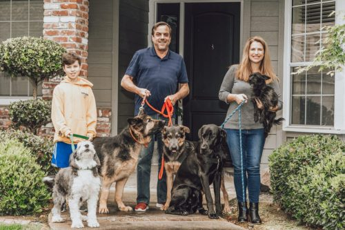 front porch photo family and 5 dogs